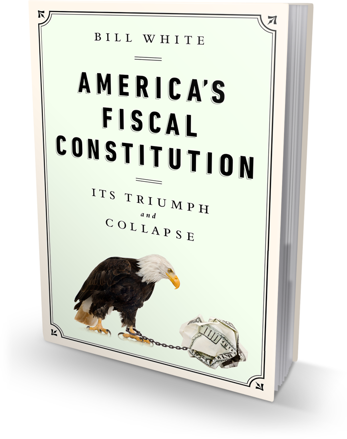 AmericasFiscalConstitution-3dLeft1